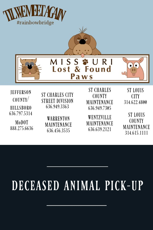 Deceased Animal Pickup
